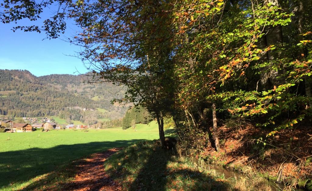 Wanderweg im Bregenzerwald